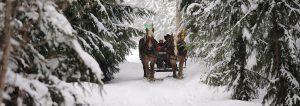 sleigh-ride-whistler